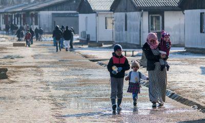 Avrupa mülteciler