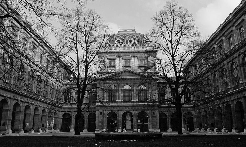 Aslan araştırması viyana üniversitesi
