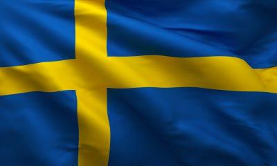 İsveçli