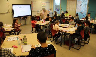 Hollanda'da Müslüman okulları