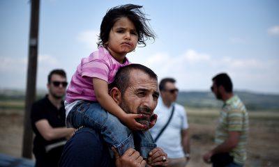 merkel mülteci kotası