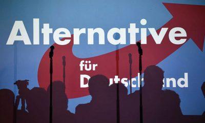 AfD Almanya medyanın rolü
