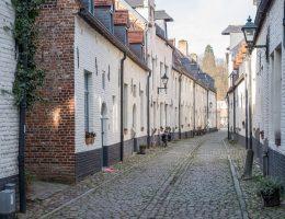 Yeni Flaman İttifakı Belçika